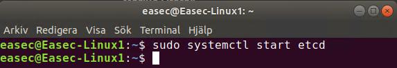 sudo systemctl start etcd
